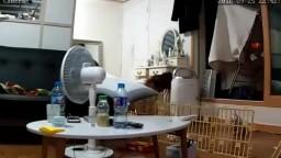 偷拍韓國美女在家露奶